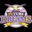 Ico futuredreams